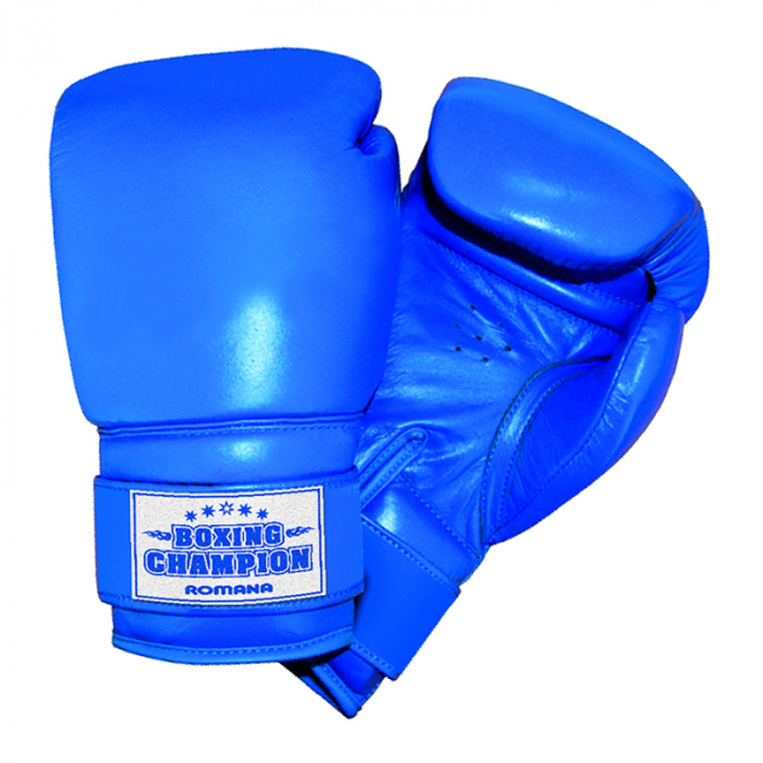 Mănuși de box pentru copii Romana family [0]