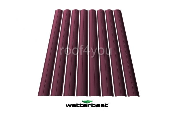 Şipcă de gard metalică, WETTERBEST, Lucios grosime 0.45 mm, RAL 3005 0