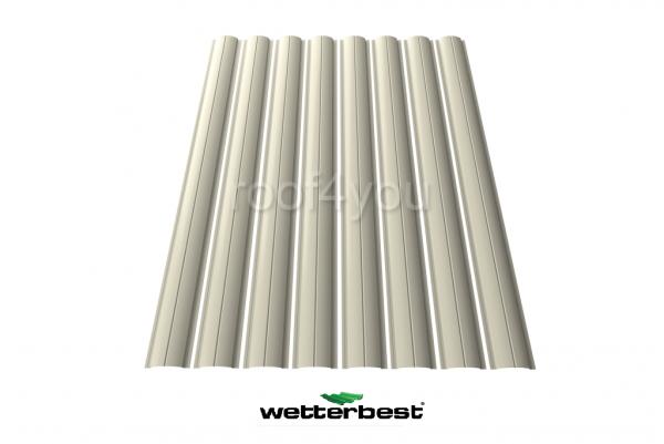 Şipcă de gard metalică, WETTERBEST, Lucios grosime 0.45 mm, RAL 9002 0