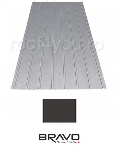 Tabla Cutata H12 BRAVO 0,45 mm / RAL 8019 Lucios 0