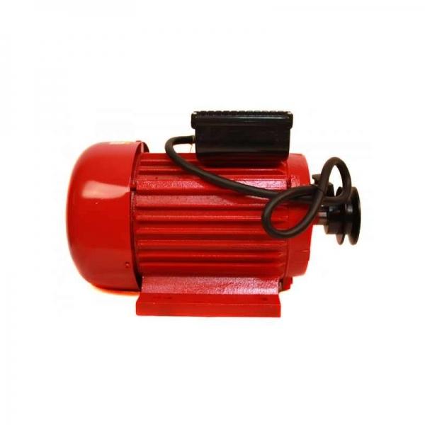 Motor electric TROIAN monofazat (monofazic) 3 KW 3000 Rpm [0]