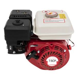 Motor benzina 7.5CP OHV, ax pana 20mm, 4 timpi, CAMPION CMP-0238, Model Nou0