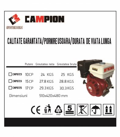 Motor pe benzina Campion CMP0723, 10 Cp, 4 timpi, OHV, ax pana 25 mm [4]