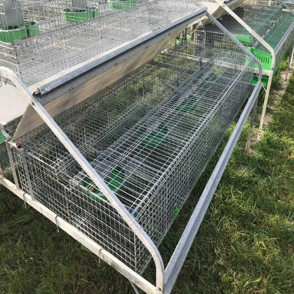 Cusca iepuri 38 compartimente [1]