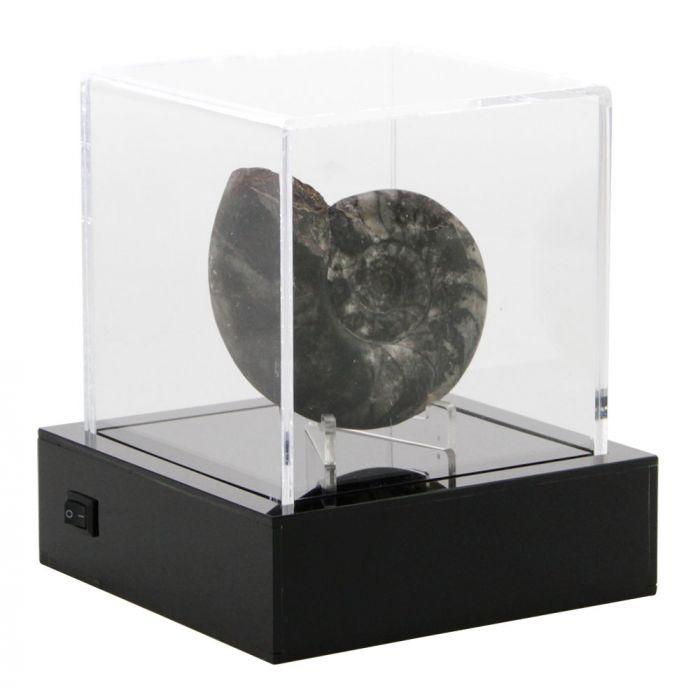 """Cub de prezentare iluminat """"Light cube"""" [1]"""