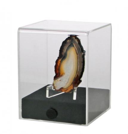 Vitrina expunere, 80 x 80 x 100 mm, cub acrilic pentru machete-5286 [0]