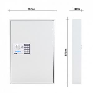 Caseta chei S100 inchidere electronica4