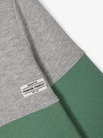 Bluza copii, bumbac organic, baieti - Name It Valdor Ivy3