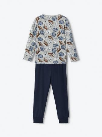 Pijama baieti, bumbac organic - Ani5