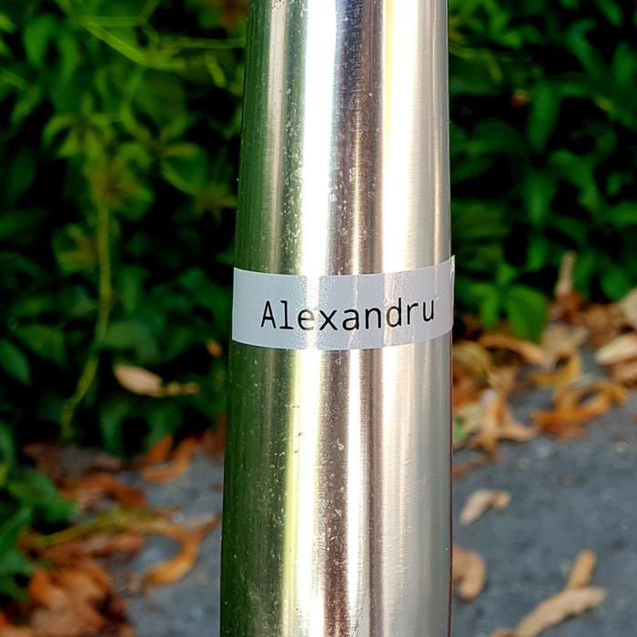Aparat de etichetat LabelManager 360D si 1 caseta etichete profesionale, 12 mmx3m, negru/argintiu, S0879510, 2084401-big