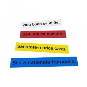 Aparat de etichetat (imprimanta etichete) DYMO LabelManager 160P, QWERTY si 3 benzi originale Dymo, rosu, galben si albastru18