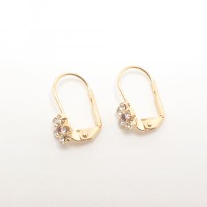 Cercei placati cu aur Rochel3