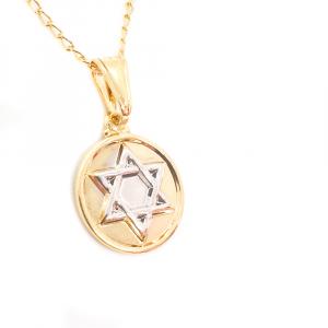 Lantisor si Steaua lui David placate cu aur2