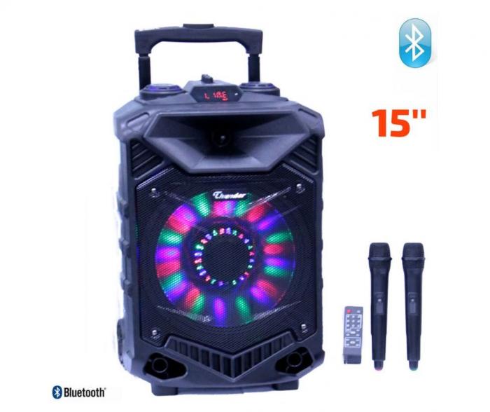 Boxa activa 15 inch ABS USB/SD/FM/BT/ACCU Thunder 0