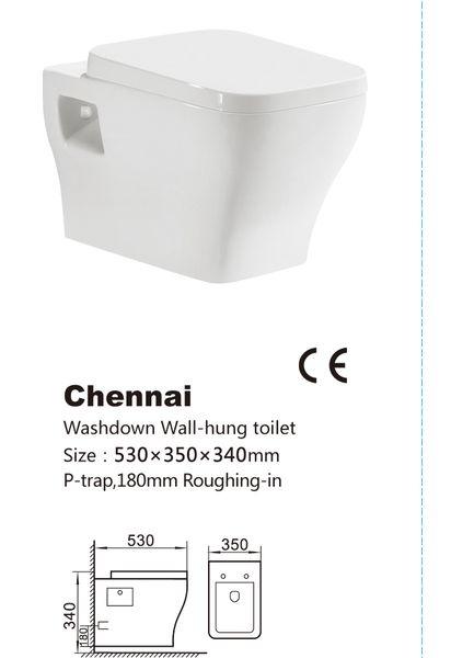 Vas de toaleta-Chennai 1