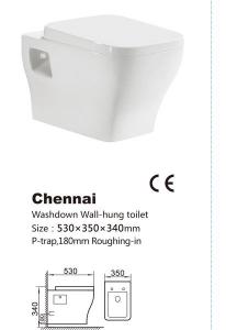Vas de toaleta-Chennai1