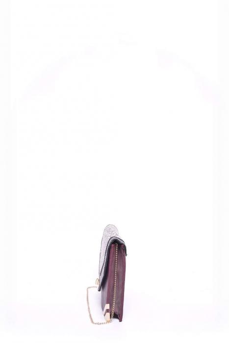 Plic/geanta dama 2