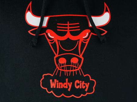 Hanorac Team Logo Chicago Bulls3