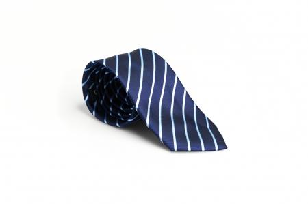 Cravata matase model in dungi [0]