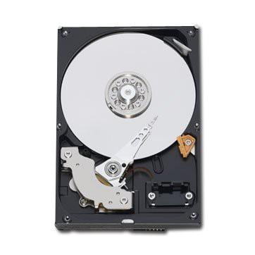 """WESTERN DIGITAL HDD Desktop Caviar Blue (3.5"""", 1TB, 64MB, SATA III-600). 2"""