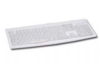Tastatura iuminata Gembird silver/white  0