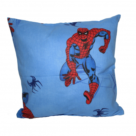 Perna, Spider-Man, 40x40cm