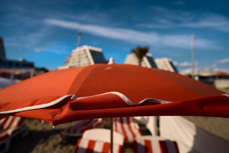 24mm F2 DG DN Contemporary - Cred că ce este modern este pentru totdeauna - Pauline Chardin