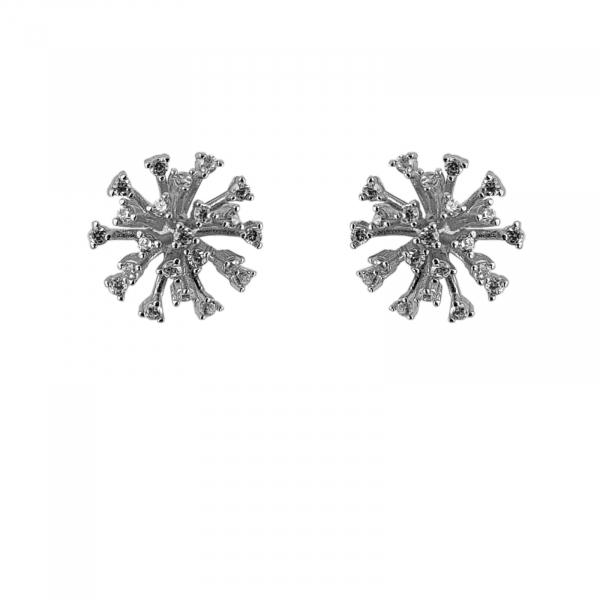 Cercei Argint 925% Shiny Pike [0]