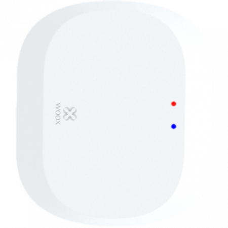 Gateway Smart ZigBee WOOX TUYA [1]