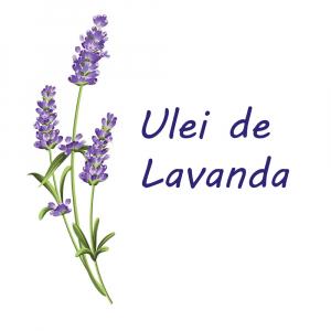 Scutece Chilotel Sleepy Natural Pants Ultra Sensitive Night Marime 5 Junior , 11-18kg, 24 bucati2