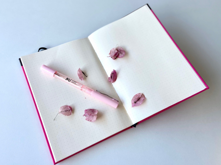 Colectia BuJo Teenager Roz Pastel [3]
