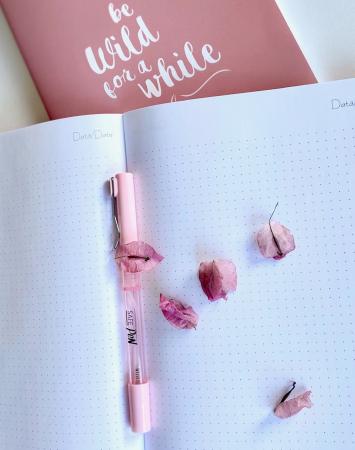 Colectia BuJo Teenager Roz Pastel [4]
