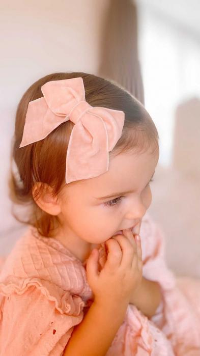 Celine Pink Clips [1]