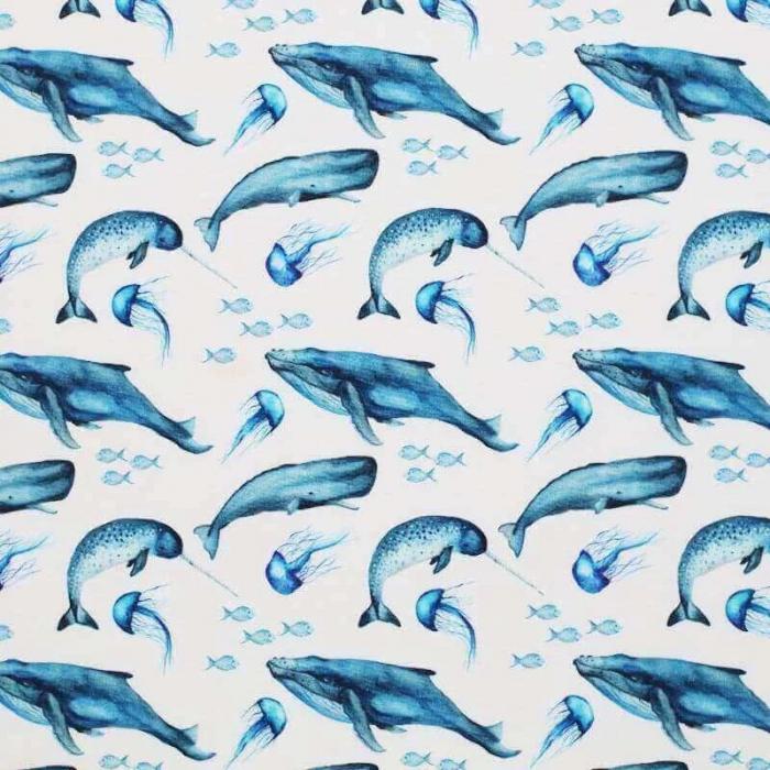 Summer Blue Whales [1]
