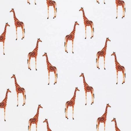 Antonia Giraffe [2]