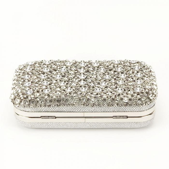 Geanta clutch argintie cu cristale Rosanna 5