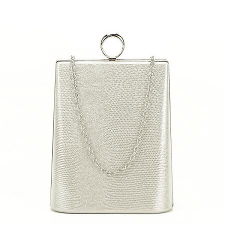 Geanta clutch argintiu cu imprimeu Noemi3