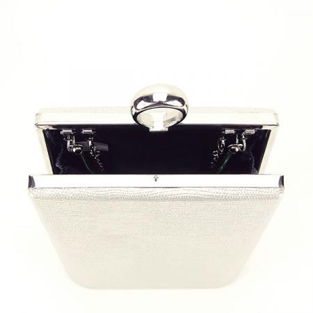 Geanta clutch argintiu cu imprimeu Noemi5