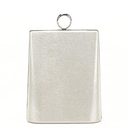 Geanta clutch argintiu cu imprimeu Noemi2