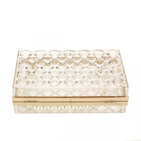 Geanta clutch transparent Ania [6]