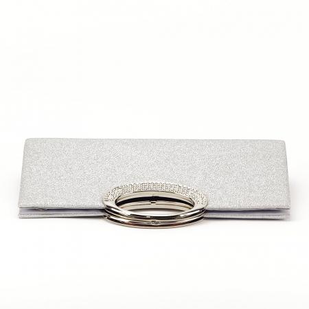 Plic argintiu cu sclipici Erica4