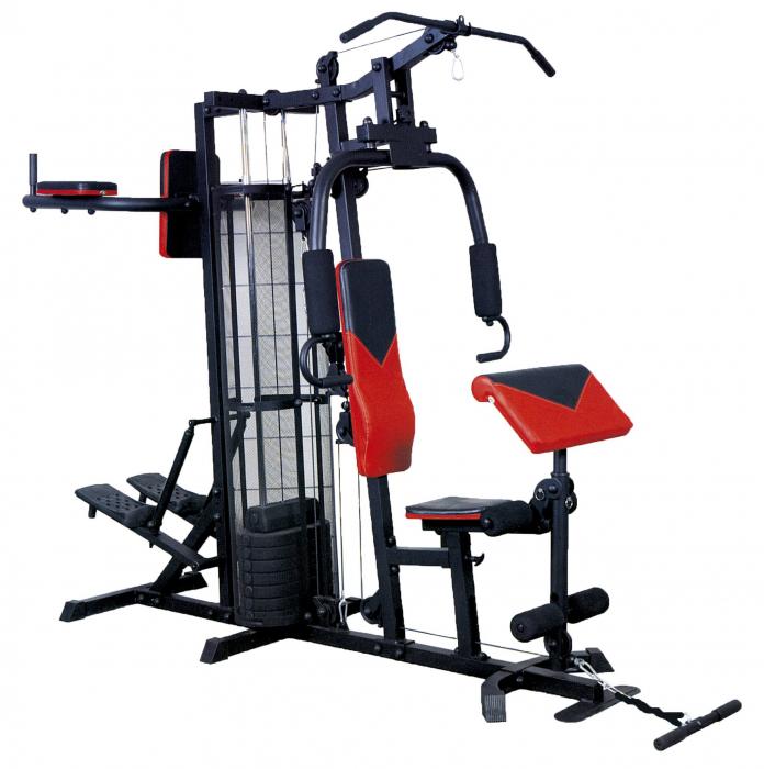 Aparat Multifunctional Spartan Pro Gym II [0]