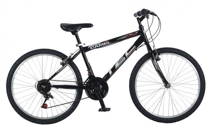 "Bicicleta MTB copii Tec Camel Chanel Kadro, roata 24"", culoare negru [0]"