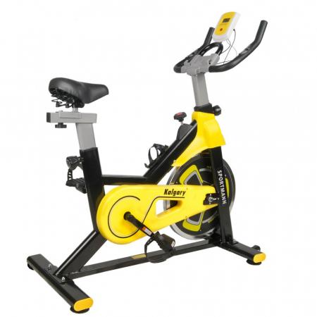 Bicicleta fitness indoor cycling Sportmann Kalgary [0]
