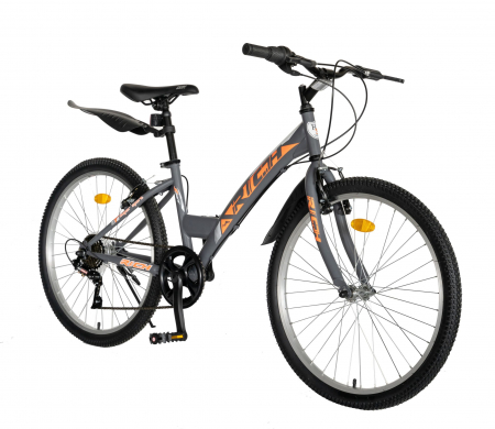 """Bicicleta TREKKING 24"""" RICH R2430A, 6 viteze, culoare gri/portocaliu [1]"""