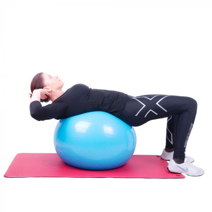 Minge aerobic inSPORTline Top Ball 45 cm [10]