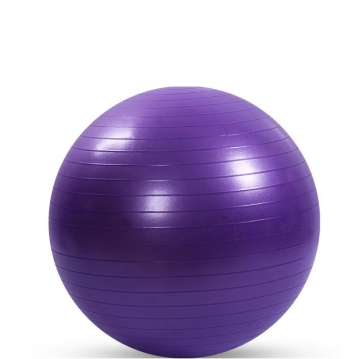 Minge de aerobic pentru sala 75cm mov [0]