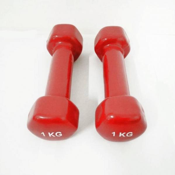 Set gantere epoxy 2x1kg Dayu Fitness rosu [0]