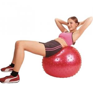 Minge fitness 65 cm [2]