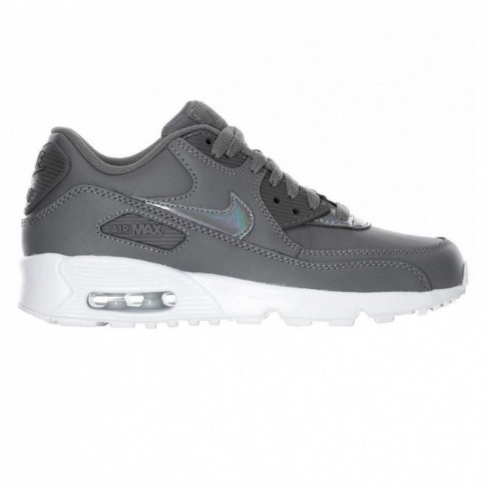 Air Max 90 Leather (gs) [0]